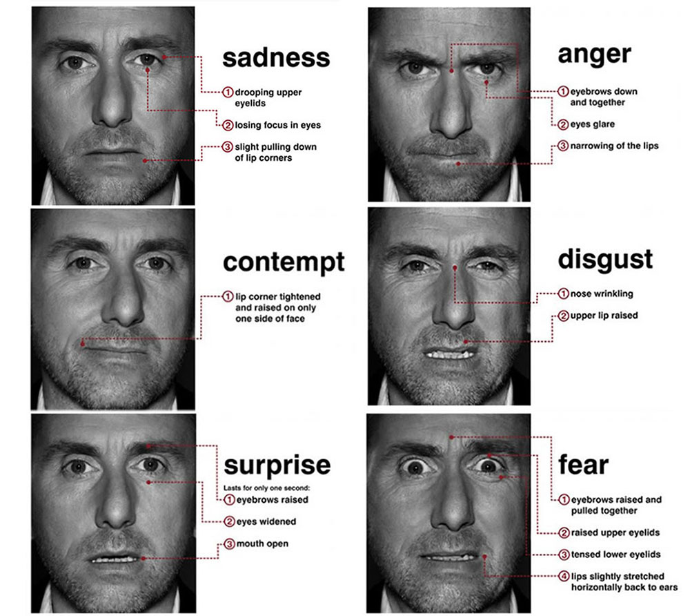 11 14 The Expressions Of The Six Universal Emotions According To Paul Ekman