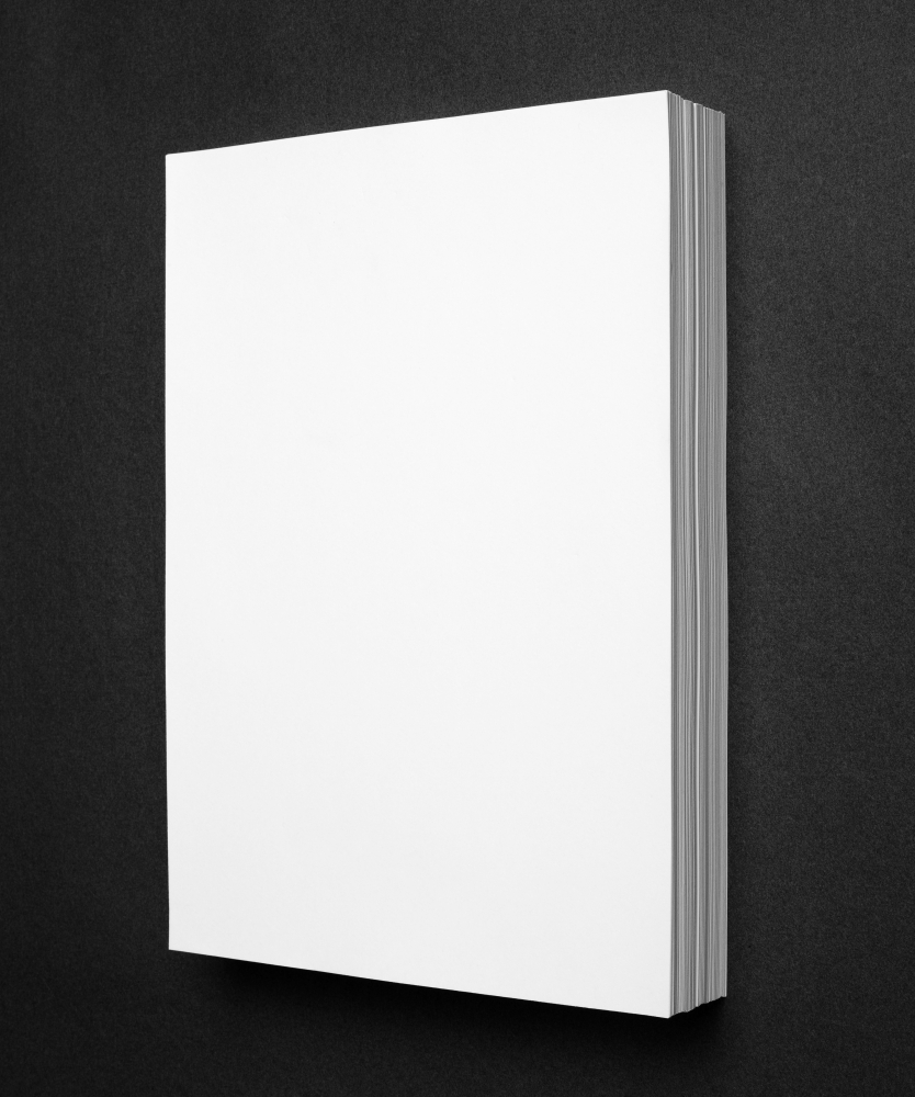 365 Sheets of White Paper (Diptych), Amsterdam, 2015