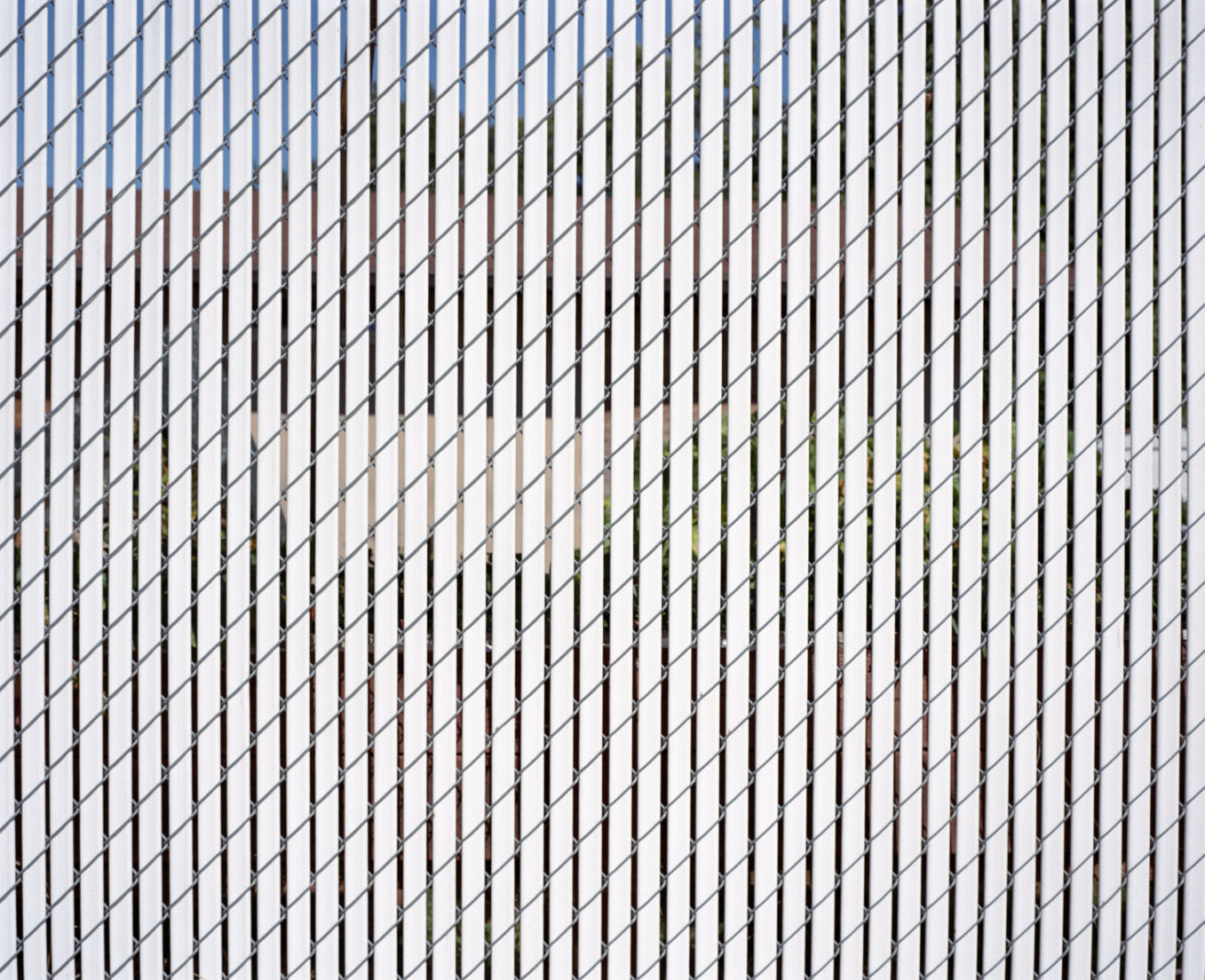 Scrim, Oregon, USA, 2016