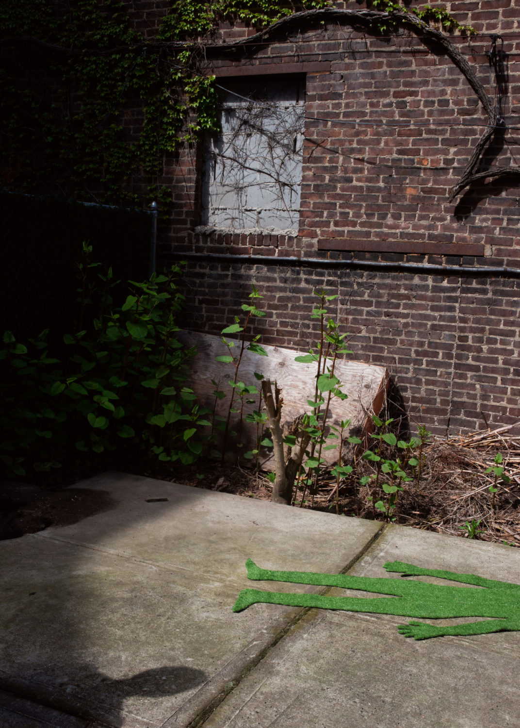 image of a brick overgrown courtyard maybe outside of a New York apartment building. A turf green human body cut out lies on the concrete floor and is coming from the right side of the frame. A shadow of another human figure, shoulders and head only, comes out of the left side of the frame. Image is lit dramatically with sunlight and the green pops among shades of grey and brown.